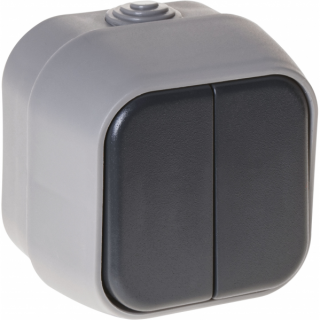 Interruptor Doble  Bert Ip54 Gris 7x7x5